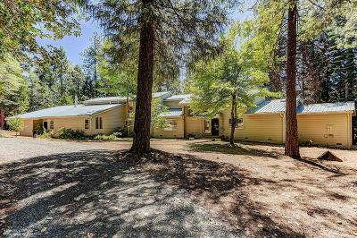 Nevada City Single Family Home For Sale: 14827 Scotts Flat Pines Road