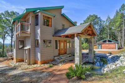 Nevada City Single Family Home For Sale: 12274 Sesame Street