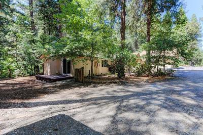 Nevada City Single Family Home For Sale: 15561 Cascade Loop