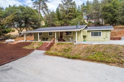 Single Family Home For Sale: 17187 Oscar Drive