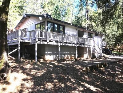 Grass Valley Single Family Home For Sale: 15364 Brewer Road