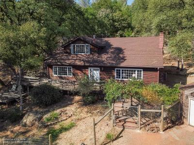 Grass Valley Single Family Home For Sale: 19943 Buckboard Road