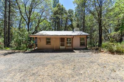 Grass Valley, Smartsville Single Family Home For Sale: 13364 State Highway 49 Highway