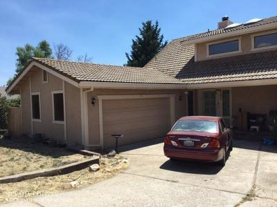 Grass Valley Single Family Home For Sale: 167 Arcadia Drive