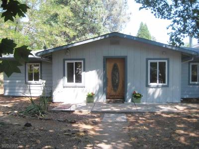Grass Valley Single Family Home For Sale: 10323 Adam Avenue