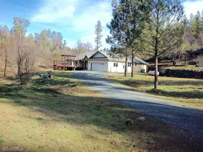 Nevada City Single Family Home For Sale: 13326 Owl Creek Road