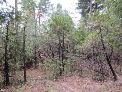Residential Lots & Land For Sale: 15951 Ophir Silver Road