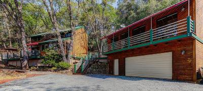 Nevada County Single Family Home For Sale: 16543 Patricia Way