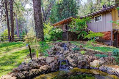 Grass Valley Single Family Home For Sale: 13366 N Meadow View Drive