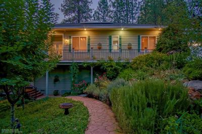 Grass Valley Single Family Home For Sale: 14174 Warren Drive