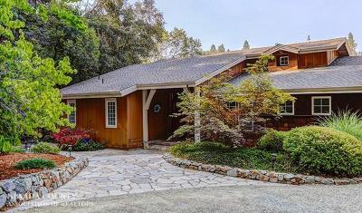 Nevada City Single Family Home For Sale: 15741 Lewis Road
