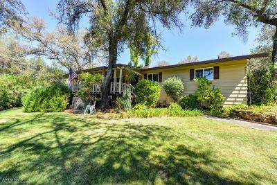 Grass Valley Single Family Home For Sale: 10362 Wolf Road