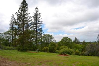 Nevada County Single Family Home For Sale: 12028 Rex Reservoir Road