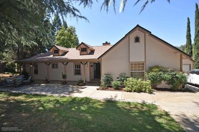 Nevada County Single Family Home For Sale: 15842 Gary Way