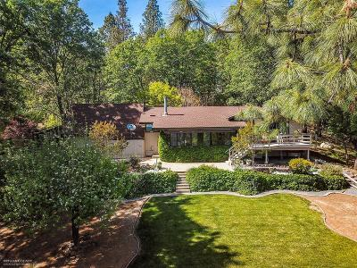 Grass Valley Single Family Home For Sale: 20033 Casa Loma Drive