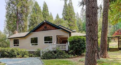 Nevada City Single Family Home For Sale: 13767 N Bloomfield Road