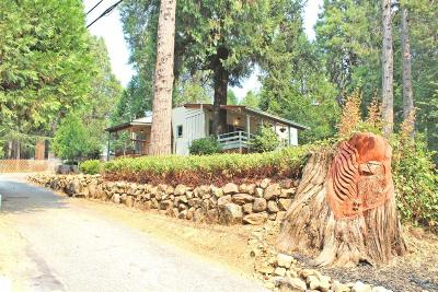 Grass Valley Single Family Home For Sale: 11282 Squirrel Creek Road