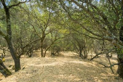 Penn Valley CA Residential Lots & Land For Sale: $42,000