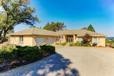 Grass Valley Single Family Home For Sale: 13360 Knollwood Lane