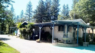 Grass Valley Single Family Home For Sale: 12775 Silver Crest Drive