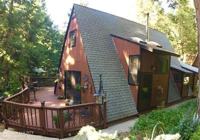 Nevada City Single Family Home For Sale: 13946 Dirt Road