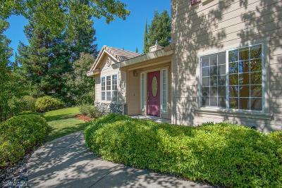 Auburn Single Family Home For Sale: 11040 Sunrise Ridge Road