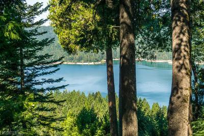 Nevada City Single Family Home For Sale: 12930 Summit Ridge Drive