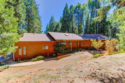 Nevada City Single Family Home For Sale: 12333 Sintek Lane