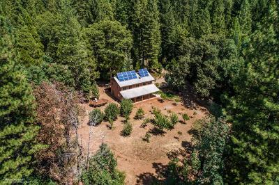 Nevada City CA Single Family Home For Sale: $849,000