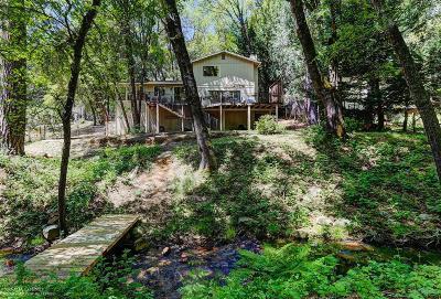 Nevada County Single Family Home For Sale: 14989 Stinson Drive