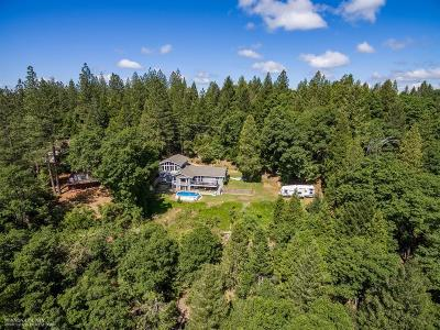 Nevada City Single Family Home For Sale: 12800 Summit Ridge Drive