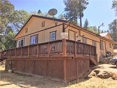 Nevada City Single Family Home For Sale: 28953 State Hwy 49
