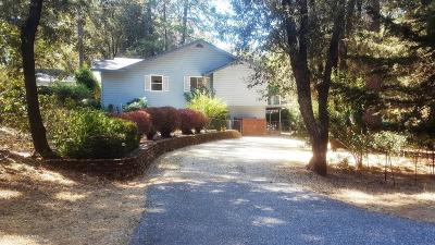 Nevada County Single Family Home For Sale: 11564 Betty Way