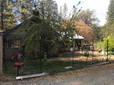 Nevada City Single Family Home For Sale: 13847 Tyler Foote Road