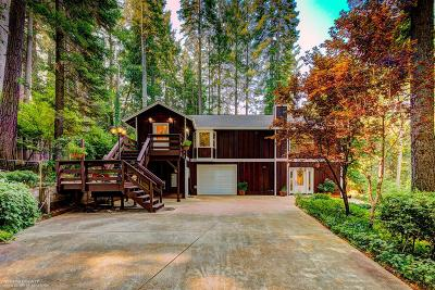 Nevada City Single Family Home For Sale: 16878 Pasquale Road