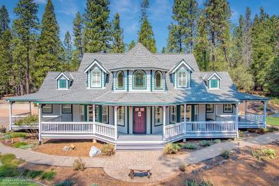Nevada City Single Family Home For Sale: 12940 Discovery Way