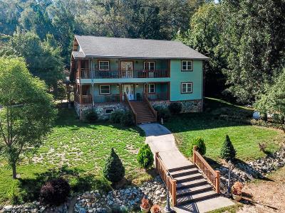Nevada City Single Family Home For Sale: 27949 Cherokee Street
