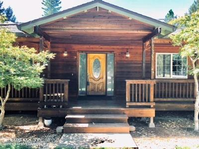 Grass Valley Single Family Home For Sale: 14941 Julia Ranch Road