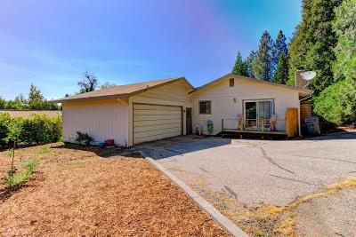 Grass Valley Single Family Home For Sale: 411 Marshall Street