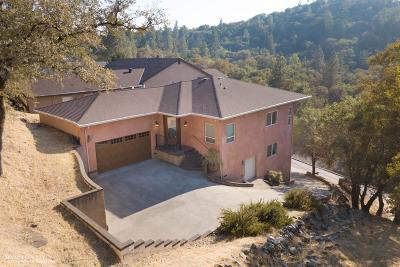 Nevada County Single Family Home For Sale: 13049 Golden Trout Way
