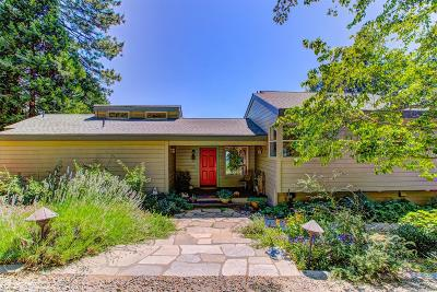 Nevada City Single Family Home For Sale: 14137 Banner Mtn Lookout Road