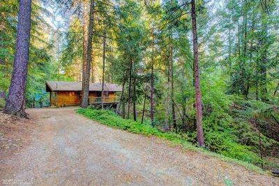 Nevada City Single Family Home For Sale: 12970 Spanish Lane