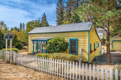 Nevada City Single Family Home For Sale: 633 W Broad Street