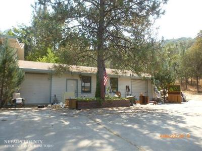 Grass Valley Single Family Home For Sale: 18098 Dog Bar Road