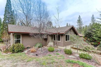 Nevada City Single Family Home For Sale: 11064 Berggren Lane