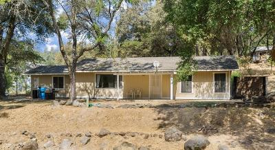 Rough and Ready Single Family Home For Sale: 16631 Gleko Road