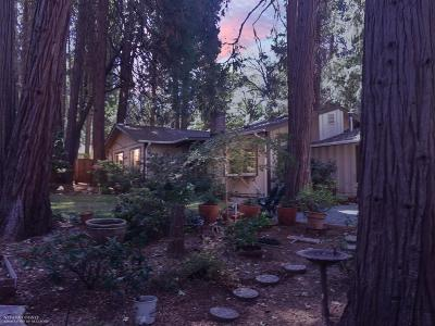 Nevada City Single Family Home For Sale: 12725 Mayflower Drive
