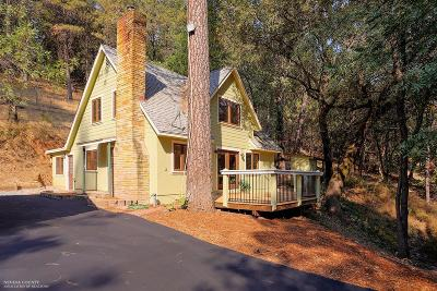 Single Family Home For Sale: 20328 Dog Bar Road