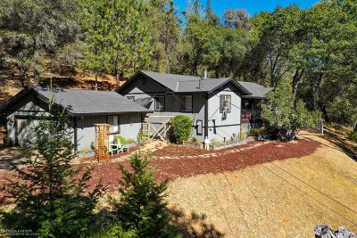 Nevada County Single Family Home For Sale: 19248 Leopard Court