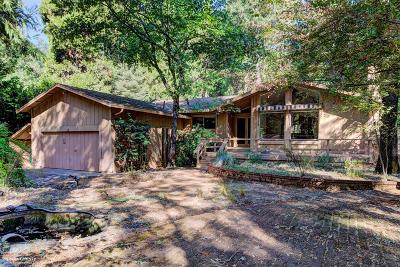 Nevada City Single Family Home For Sale: 13082 Red Dog Road